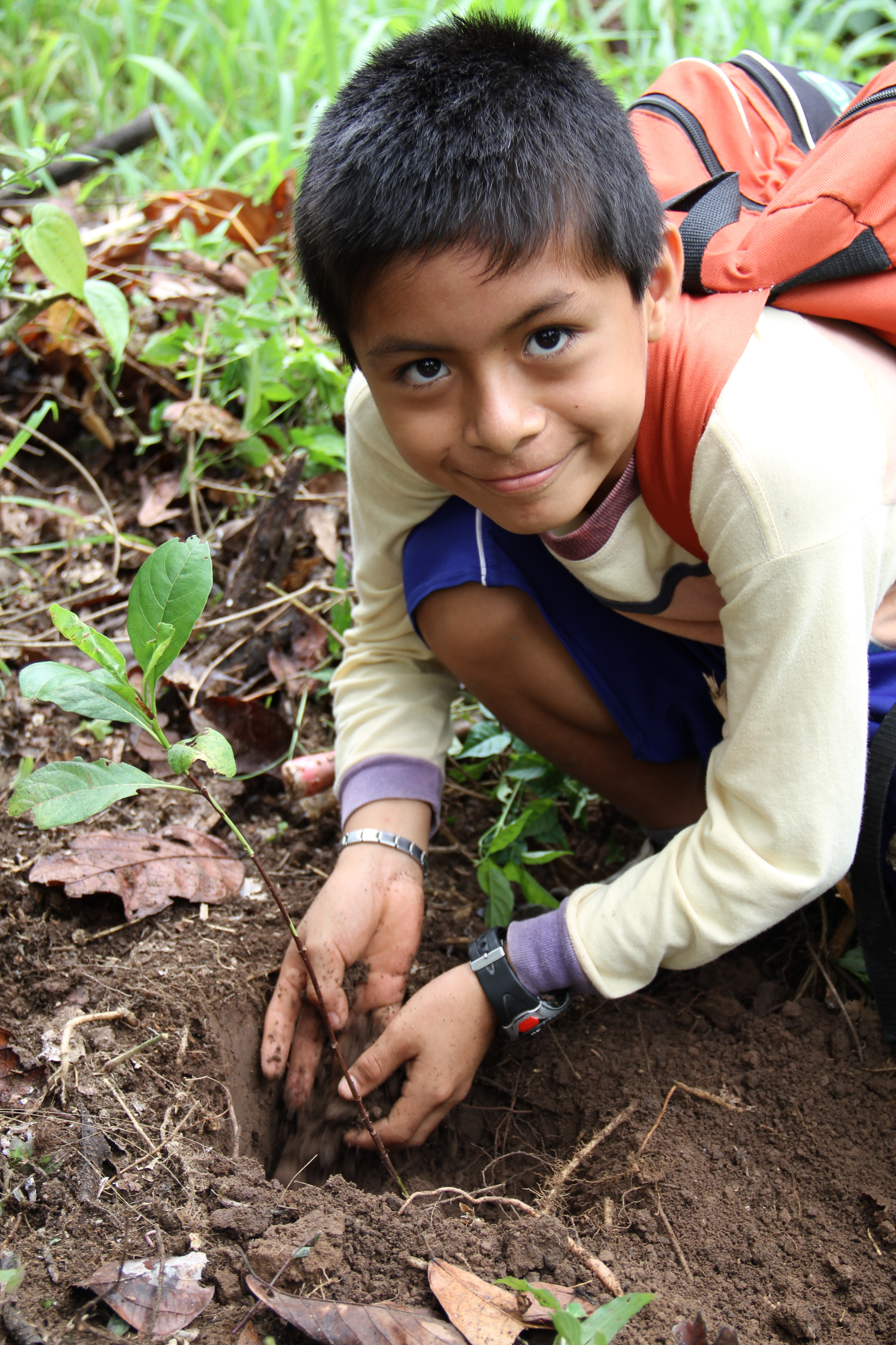 Co+op_Forest_image_boy_planting
